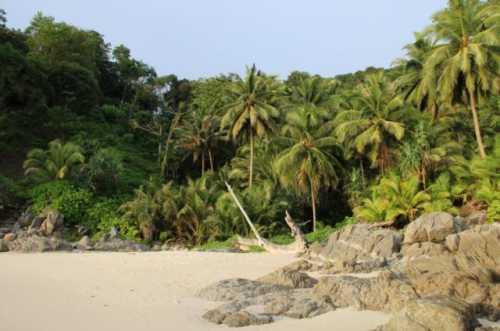 пляж фридом пхукет: как добраться, стоит ли ехать, отели
