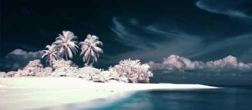 отдых в оаэ: погода и температура воды в арабских эмиратах в конце марта сезон 2019